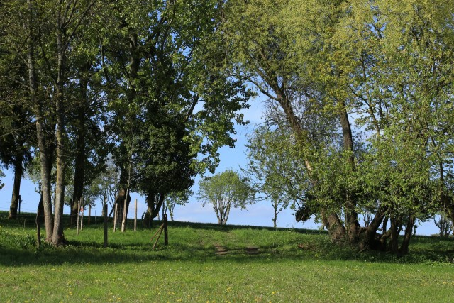 châtenay en france - parc agro forestier