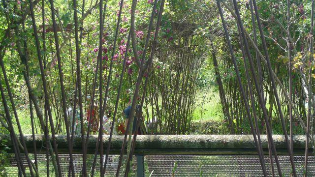 louviers - jardin du manoir de bigard